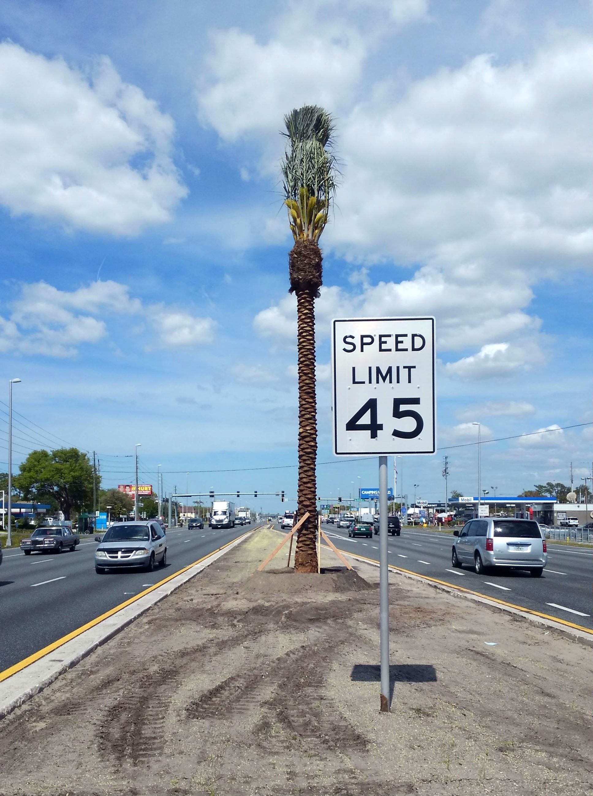 Gulf Coast Highway (U.S. Highway 19) Landscape Rehabilitation Project | Pasco County, FL - Official Website