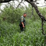 Border Patrol does more to rescue, identify missing migrants